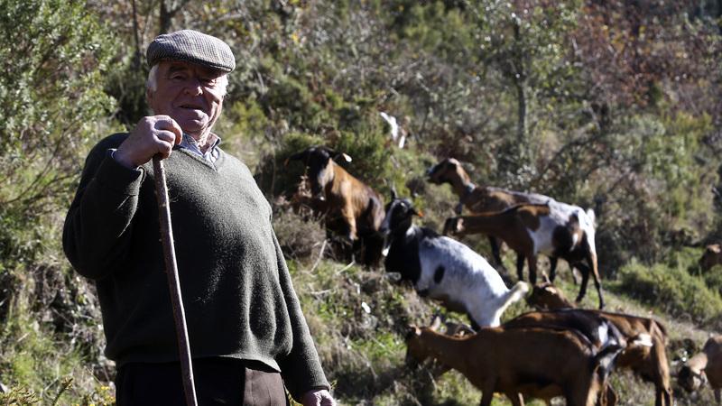 Escola de pastores da região Centro já tem 58 candidatos e arranca em setembro