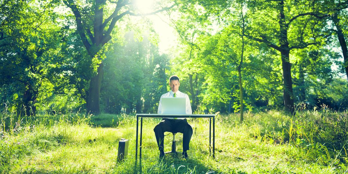 12 comportamentos para uma maior consciência ecológica