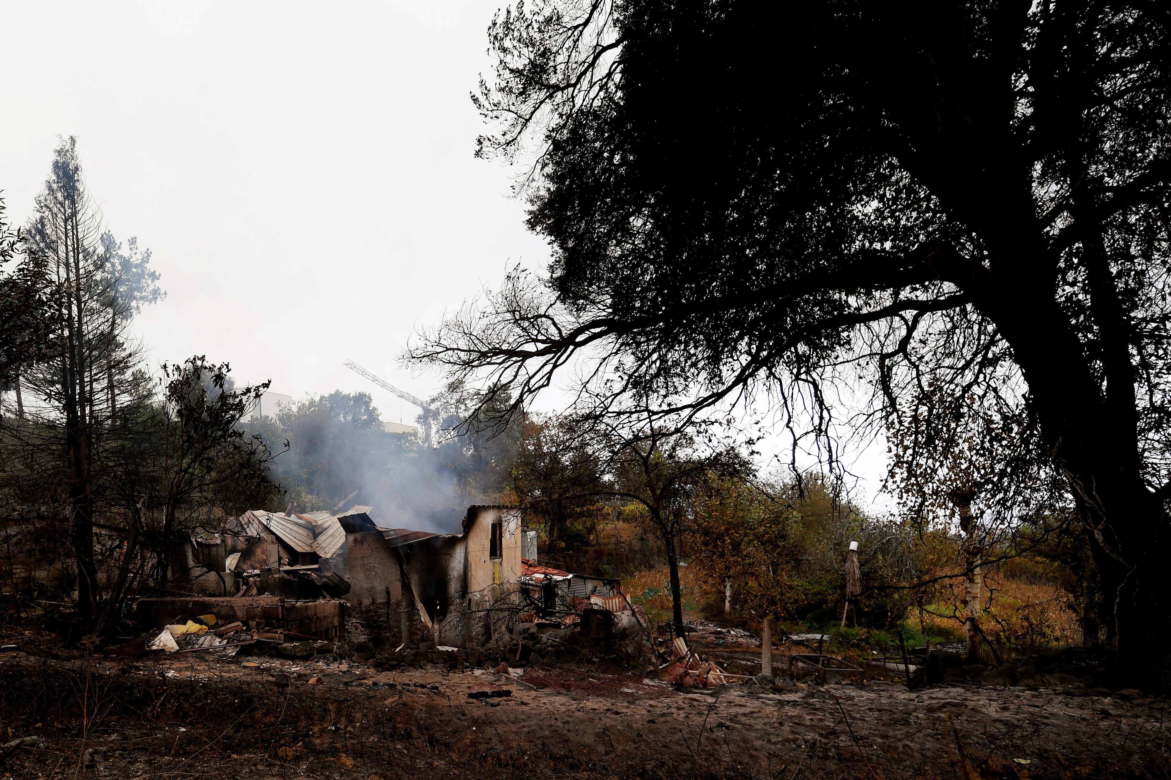 Incêndios. Associação florestal quer aplicação de milhões anunciados pelo Governo