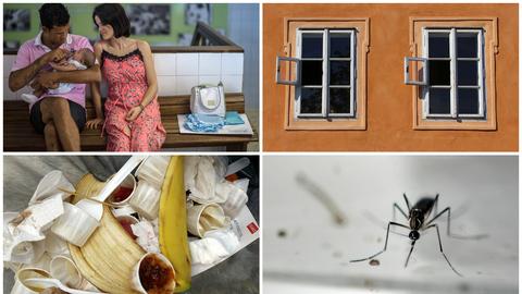 10 coisas que precisa de saber sobre o vírus Zika