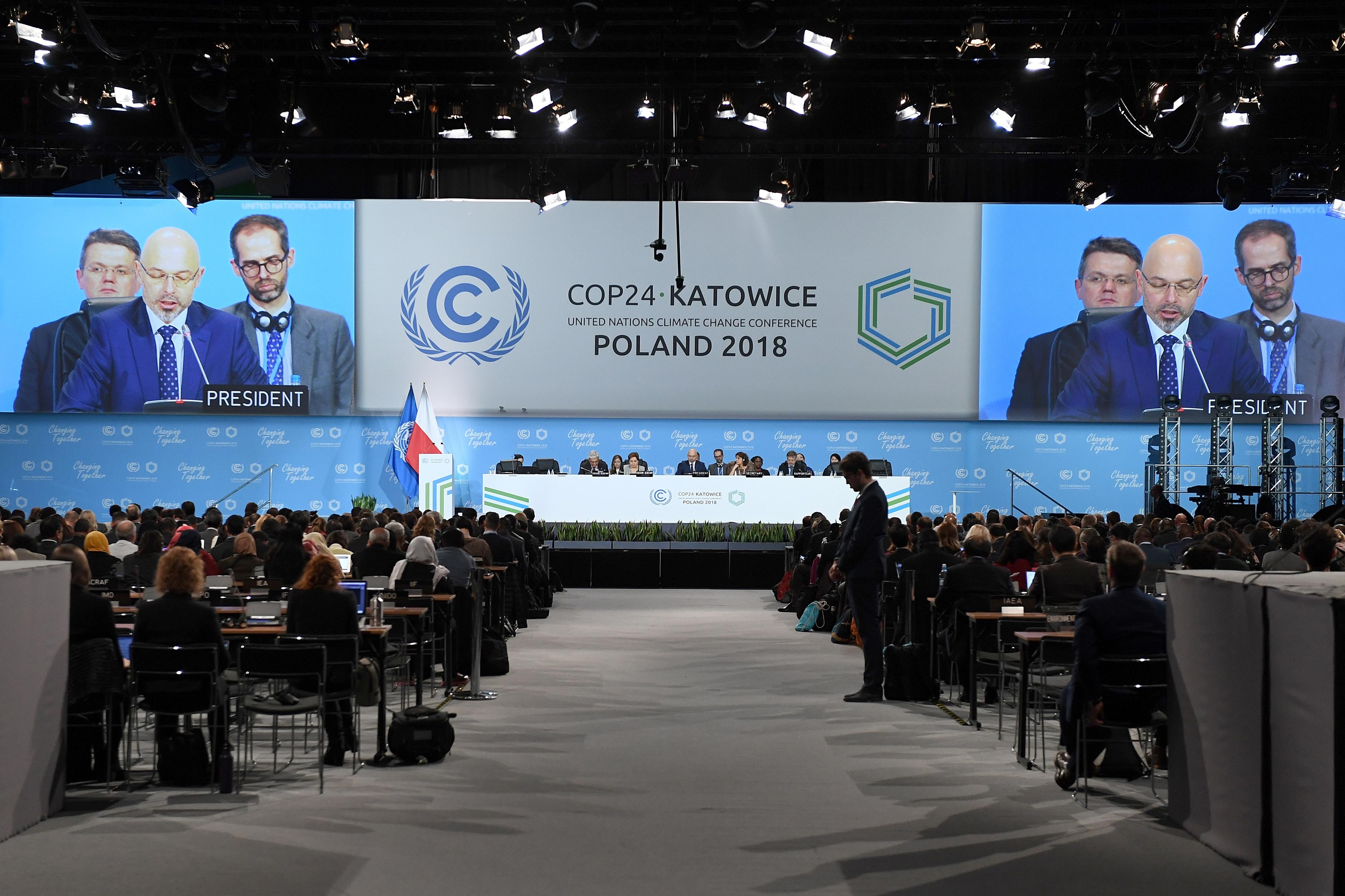 COP24 falhou na emergência exigida pelo colapso do clima, diz Associação ZERO