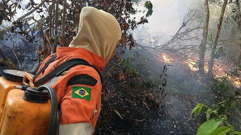 Amazónia entra na agenda do G7. Quatro dos 7 já falaram