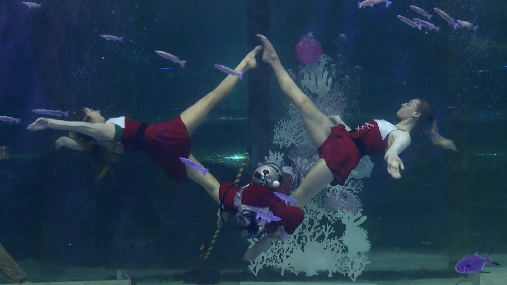 Dança artística debaixo de água para atrair visitantes este Natal
