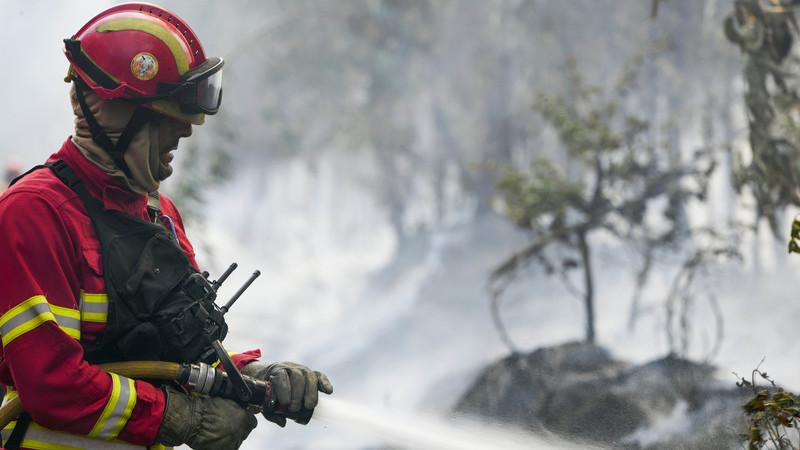 Incêndios: Fogo em Proença-a-Nova mobiliza 165 bombeiros e cinco meios aéreos