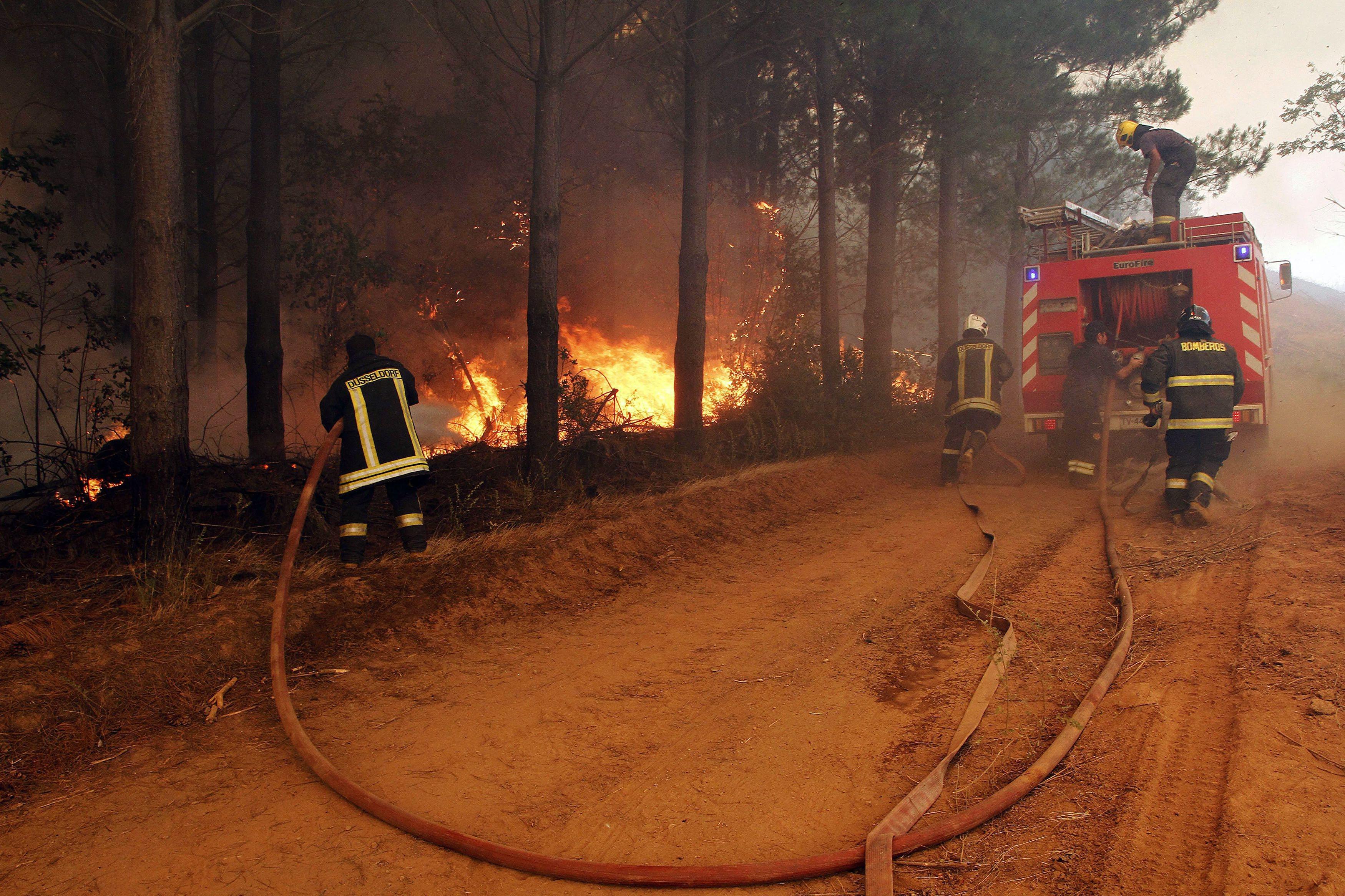 Incêndios florestais no Chile forçam 4.000 pessoas a saírem casa