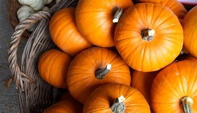 8 alimentos indispensáveis no outono e inverno. A mesa ganha e o organismo agradece