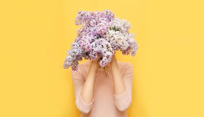 As melhores flores para oferecer a cada signo