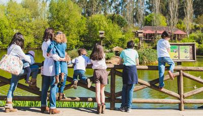 A vida selvagem no Zoo de Santo Inácio: conheça mais de 800 animais de 250 espécies diferentes
