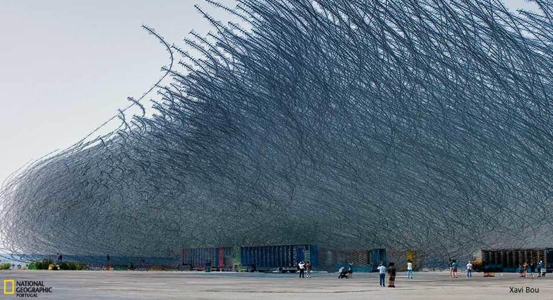 Se as aves deixassem rastos no céu, que aspeto teriam?