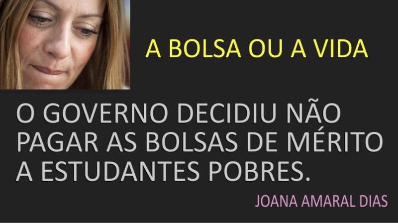 """Joana Amaral Dias escreveu que o Governo """"tem a sensibilidade de um rinoceronte""""?"""