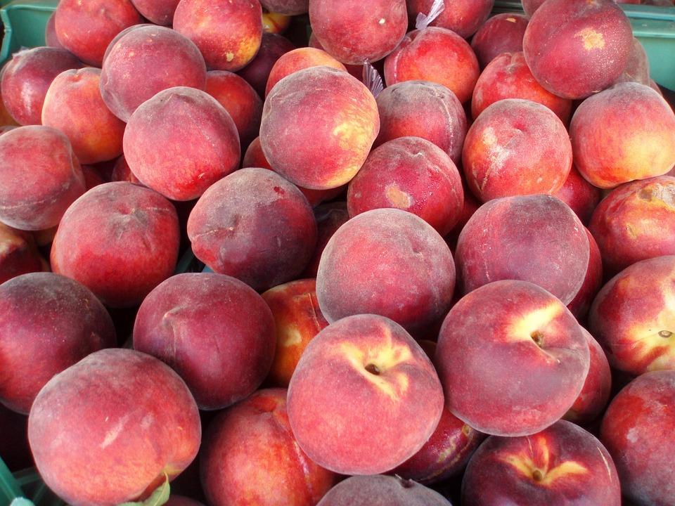 Fruta dá o mote a dois Fins de Semana Gastronómicos em Palmela