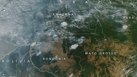 É verdade que o número de queimadas na Amazónia brasileira é o menor desde 1998?