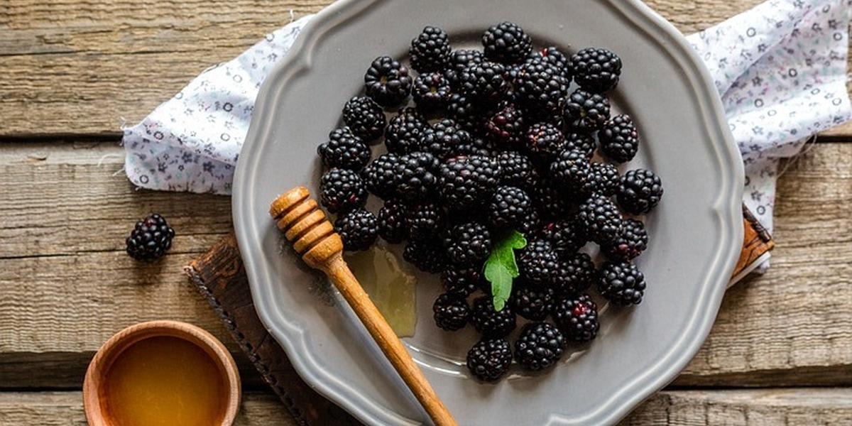 Que não nos falte o fruto amigo do sistema imunitário. A amora em receitas deliciosas