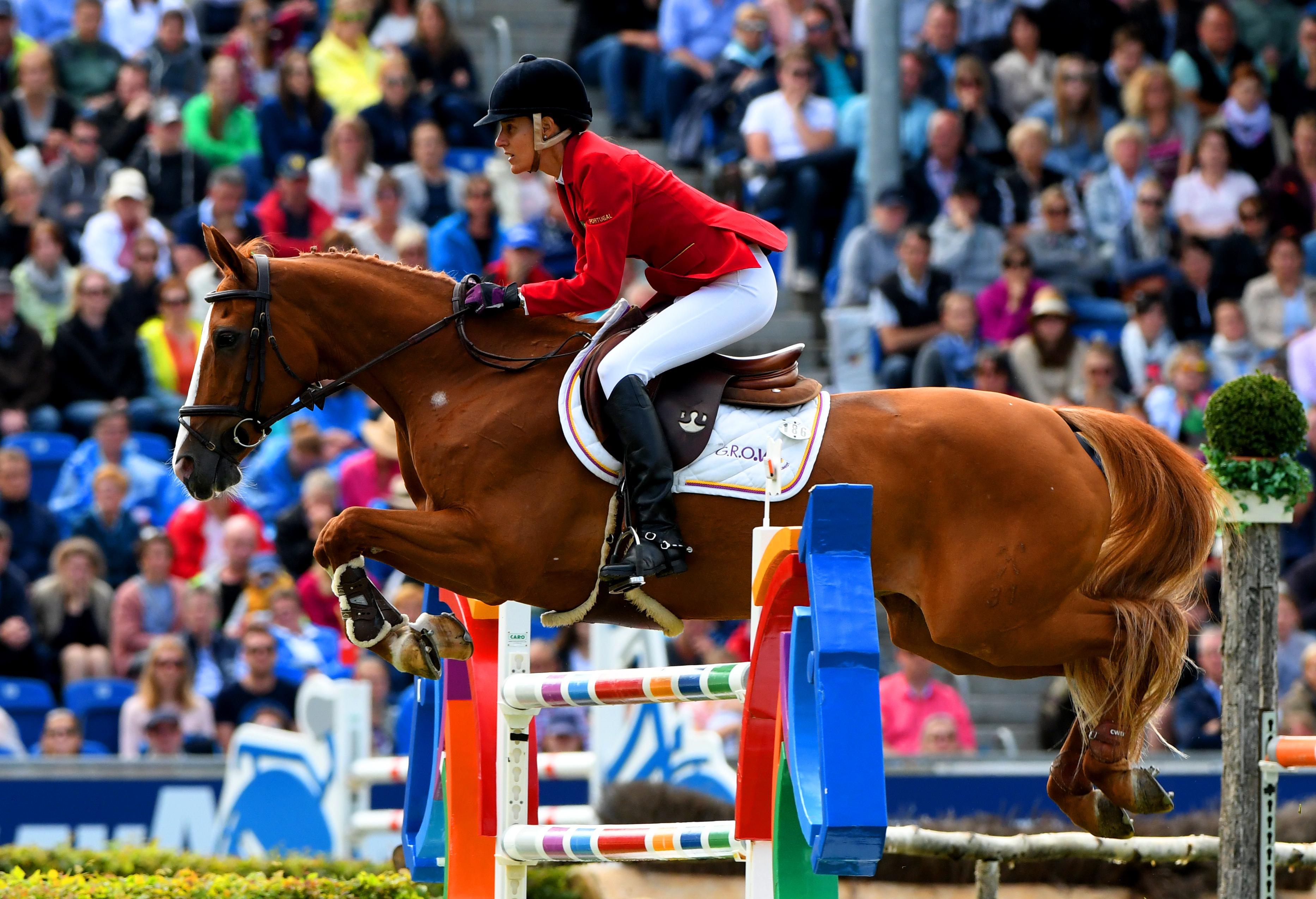Luciana Diniz vence concurso internacional de saltos em Roterdão