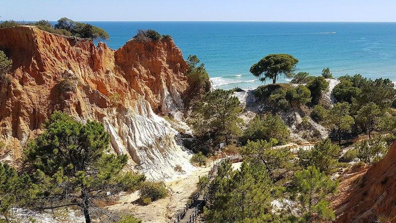 Praia portuguesa destaca-se em ranking internacional das melhores praias