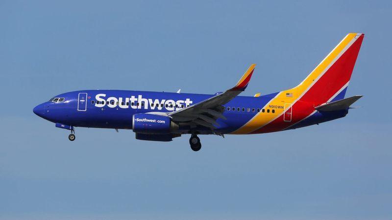 EUA: Jovem afirma que companhia aérea a obrigou a abandonar o peixe de estimação no aeroporto