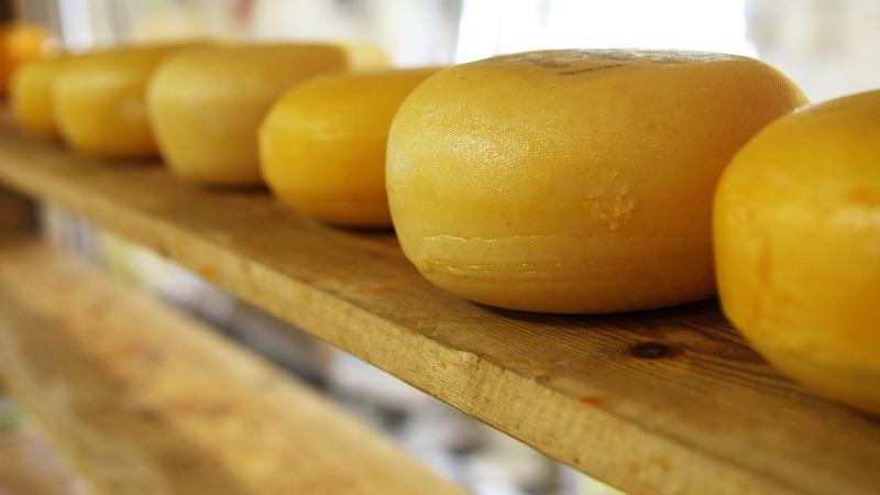 Será que o queijo afeta mesmo a memória? 10 curiosidades sobre este alimento