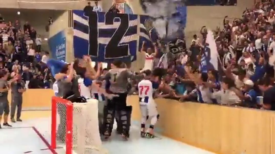 Os festejos da equipa de hóquei do Porto no Dragão Caixa