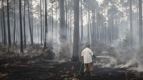 Ao minuto. Ministra cai depois de mais de 100 mortos e milhares de hectares ardidos