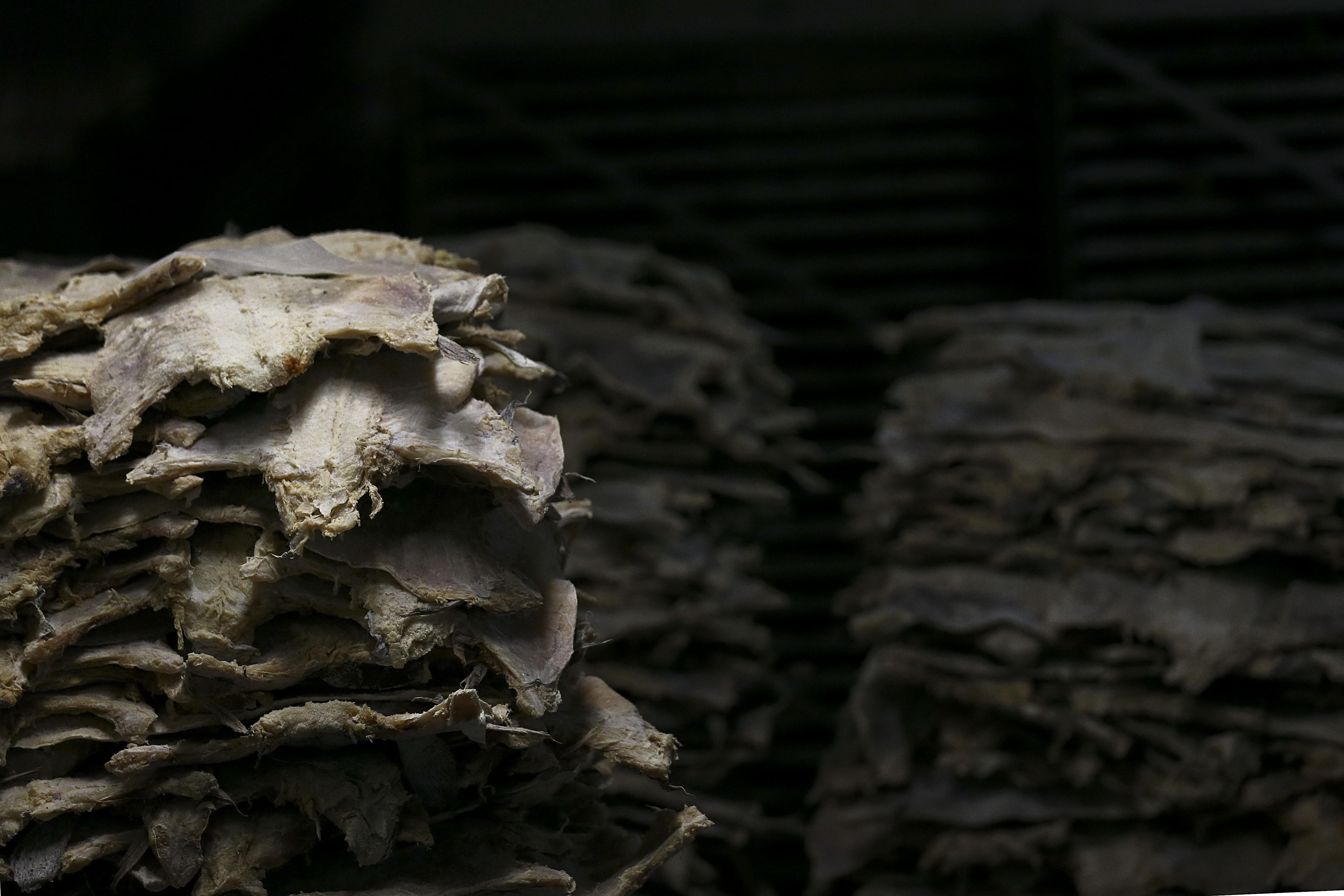 Consumo de bacalhau recua 3,4% até outubro mas deve chegar a um milhão de quilos no Natal