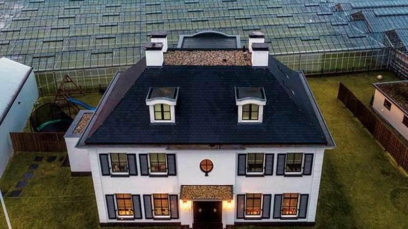 Holanda, o pequeno país que alimenta o mundo