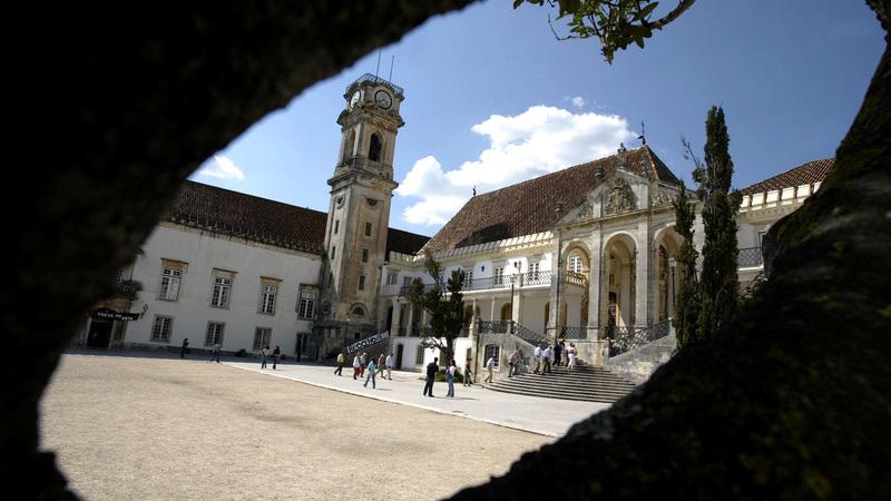 "Agricultores com ""profunda perplexidade"" por Universidade de Coimbra eliminar carne de vaca das cantinas"