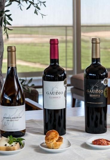 Ganhe uma experiência de enoturismo na Ribafreixo Wines