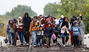 Refugiados e terrorismo