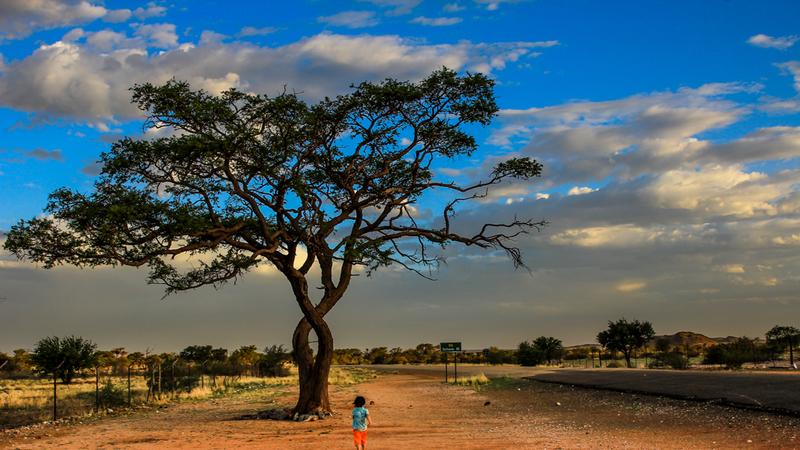 Roteiro Namíbia: 13 dias de aventuras num país onde se vê mais bichos do que gente