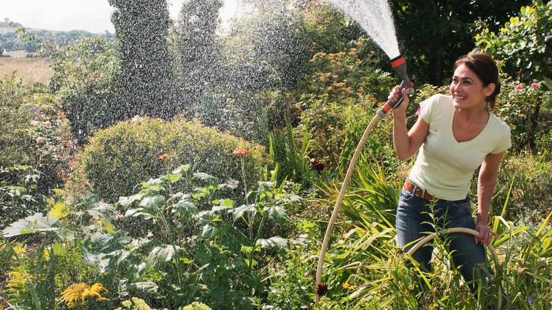 Há sempre muito para fazer no jardim e na horta e em junho não é exceção. As tarefas essenciais