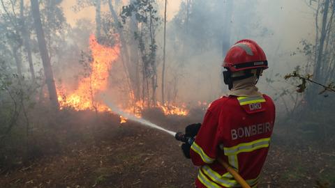 """Autarca de Cernache do Bonjardim diz que houve """"três fogos à mesma hora"""""""