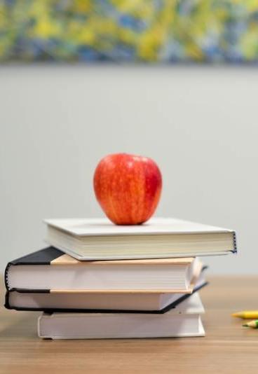 Quer testar o seu português? Divirta-se com os quizzes do Plano Nacional de Leitura