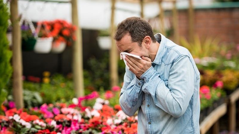 Tem dúvidas sobre as suas alergias? Envie as suas questões e obtenha a resposta de um especialista