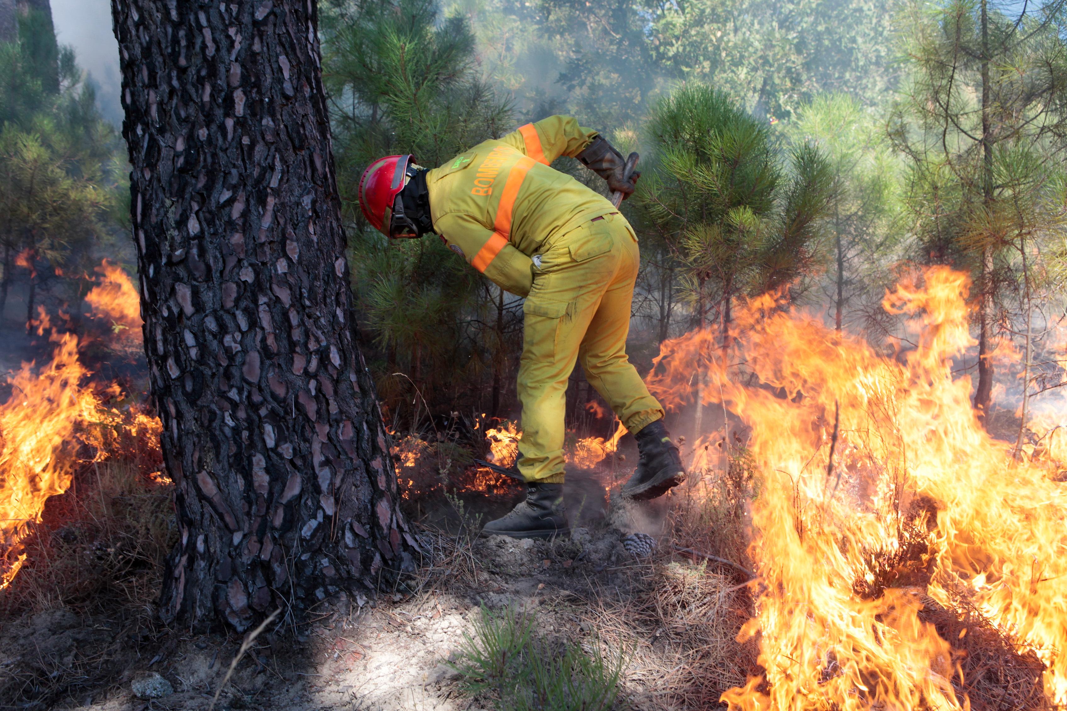 Quase 40 concelhos de nove distritos em risco máximo de incêndio