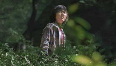Okja: estreia hoje na Netflix