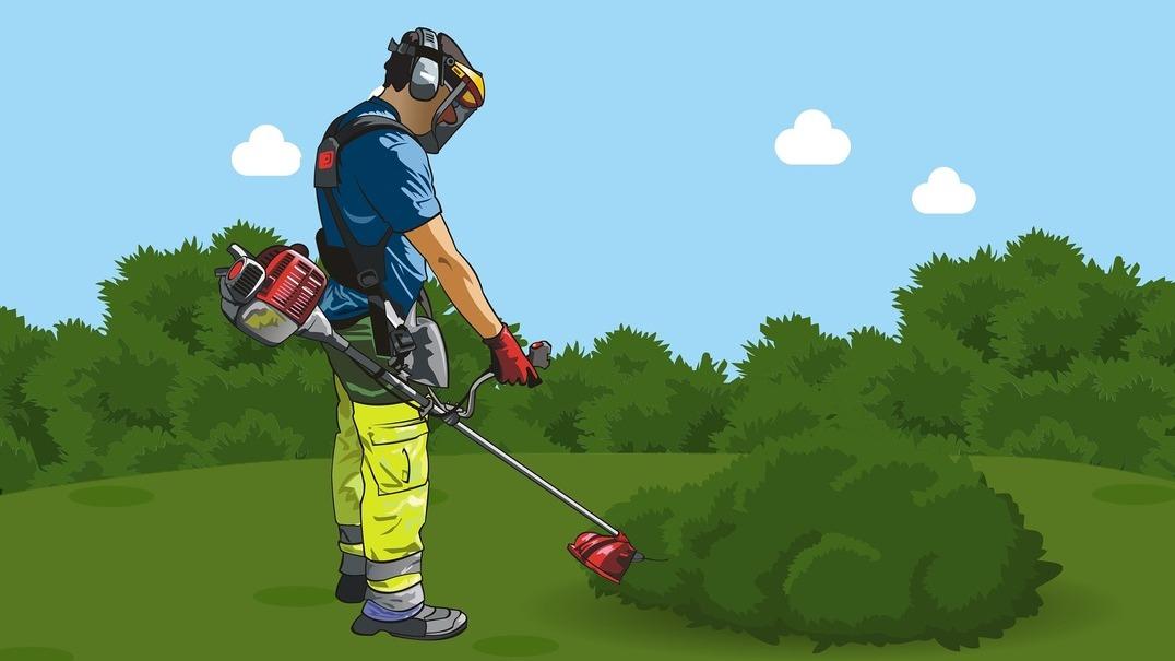 Pesticidas: conhece os riscos para a saúde?