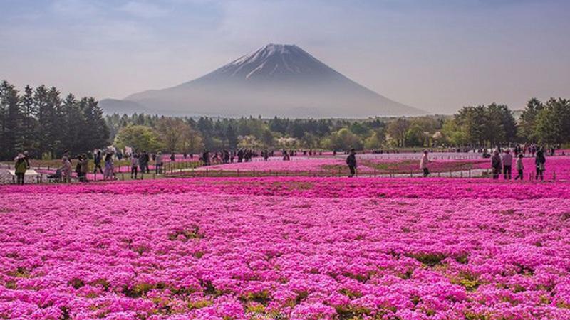 Vinte (boas) razões para visitar o Japão
