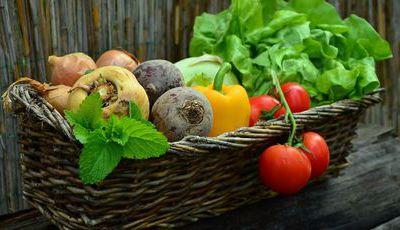 Herpes labial: alimente o sistema imunitário