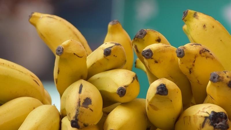 5 dicas e receitas para aproveitar as bananas maduras que tem na fruteira