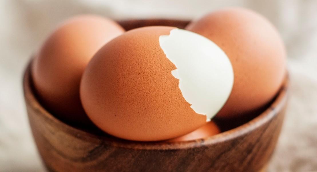 O ovo de casca castanha é mais nutritivo do que o de casca branca? Não embarque nos mitos alimentares