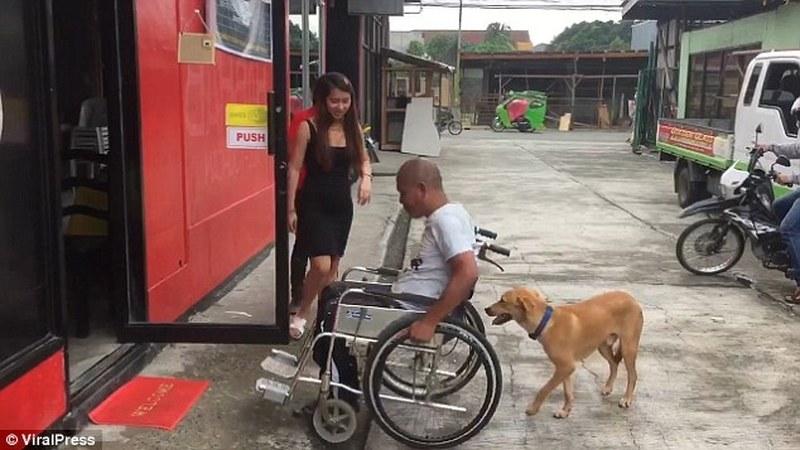 Filipinas: cão ajuda dono a movimentar-se