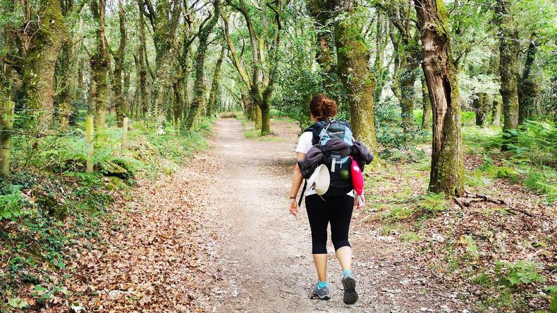 Viagem até Santiago pelo meio da Natureza