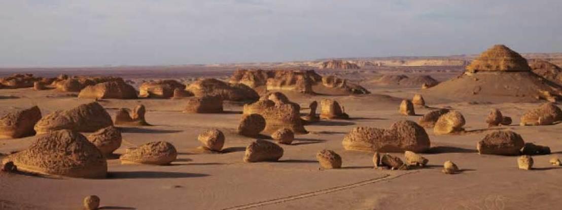Um deserto egípcio que foi em tempos um oceano: o vale das Baleias revela uma espantosa transformação