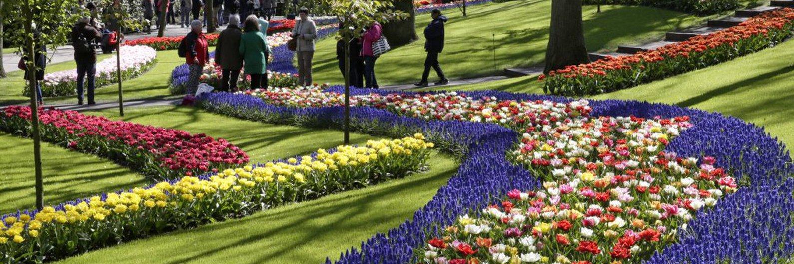 Se gosta de flores, este é um dos jardins a visitar