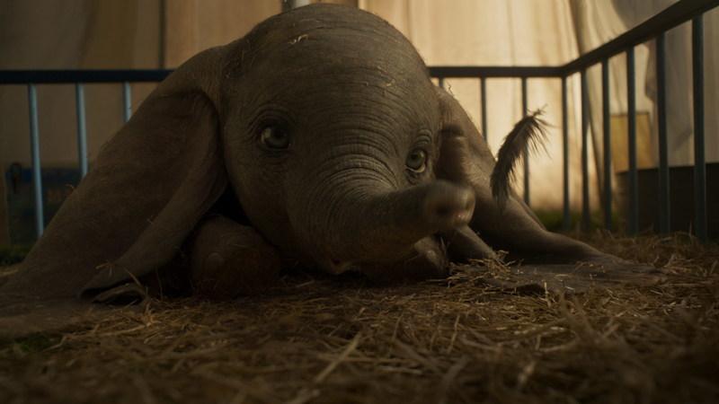 """""""Dumbo"""" voa a sério no cinema: as novas imagens do filme da Disney"""