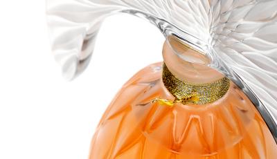 A exposição de perfumes que não vai querer perder