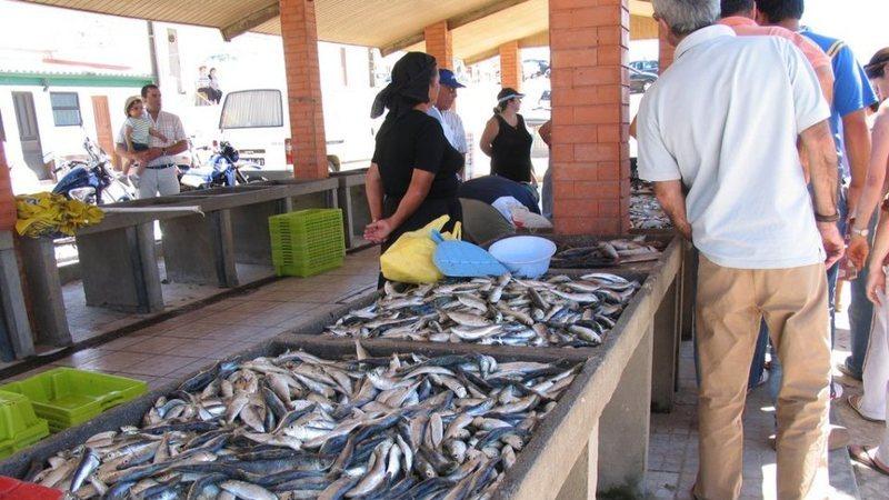 Pescado vendido pela Docapesca atingiu recorde de 212 milhões de euros em 2019