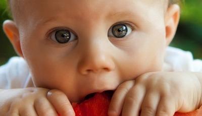 Tenha persistência: por vezes é preciso que a criança prove um alimento 10 ou mais vezes