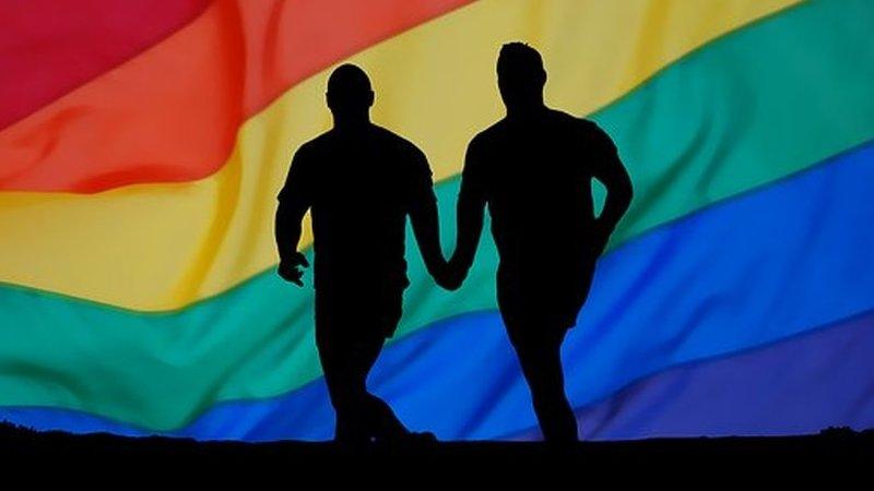 Verdadeiro ou falso: Estudos científicos comprovam relação entre o consumo de químicos e a homossexualidade?