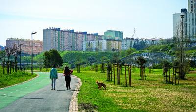 O Vale da Montanha, em Lisboa, é uma ilha de sossego rodeada de urbanidade